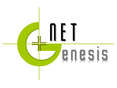logo-netgenesis-400×300
